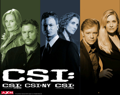 CSI - Scena del crimine - NY wallpaper containing a business suit and a suit called CSI: NY, CSI, CSI: Miami