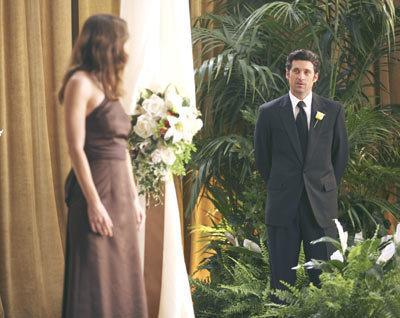Grey's Anatomy Couples karatasi la kupamba ukuta containing a business suit and a bridesmaid titled Couples