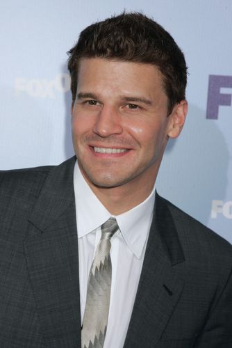 David Boreanaz - Fox Upfront 2008