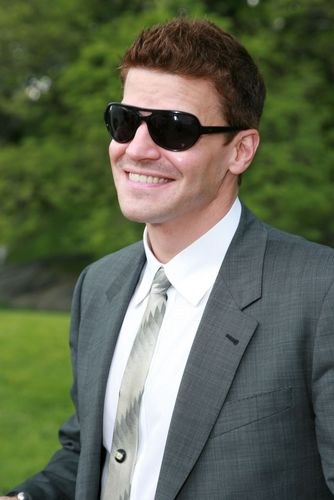 David Boreanaz - zorro, fox Upfront 2008