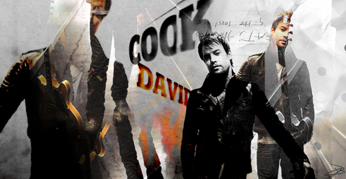 David Cook