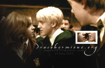 Dramione wallpaper possibly containing a business suit called Dramione