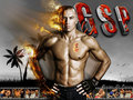 "mma - Georges ""Rush"" St. Pierre wallpaper"