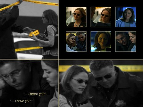 CSI wallpaper entitled Grissom & Sara