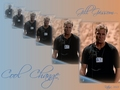 csi - Grissom wallpaper