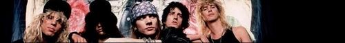 Guns 'N Roses Banner