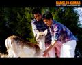 Harold and Kumar Escape From Guantanamo Bay - harold-and-kumar wallpaper
