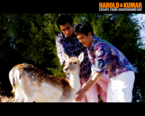 Harold and Kumar Escape From Guantanamo baya
