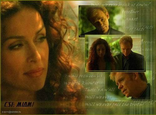 CSI: Miami wallpaper probably containing a portrait titled Horatio & Yelina