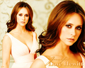 jennifer-love-hewitt - JLH wallpaper