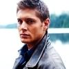 Jensen شبیہیں