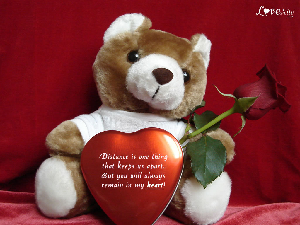 Teddy Bear with Love