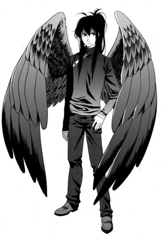 Maximum Ride wallpaper possibly with a tabard entitled Manga Fang :D