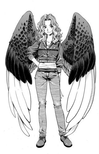Maximum Ride Hintergrund possibly containing a surcoat, wappenrock and a tabard, wappenrock entitled Manga Max
