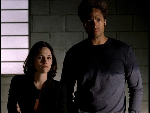 CSI wallpaper entitled Sara and Warrick