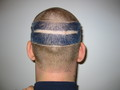 Seahawks Haircut
