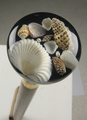 Seashell Handled Cane - walking-aids photo