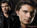 Smallville's Tom Welling - smallville wallpaper