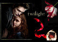 Twilght Series - twilight-series photo