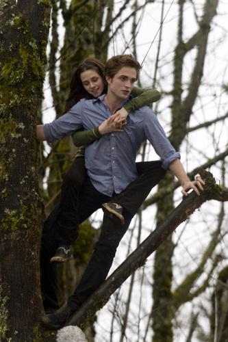 Twilight Set