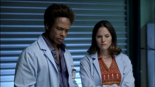 CSI wallpaper titled Warrick and Sara