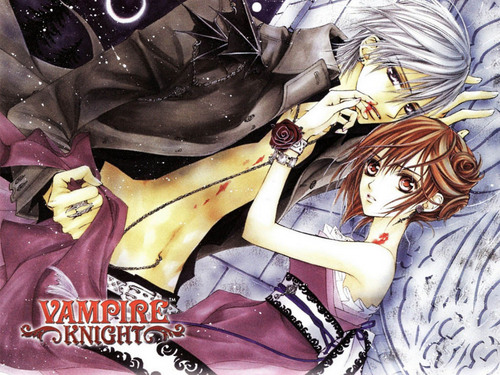 Vampire Knight images Zero & Yuuki HD wallpaper and background photos