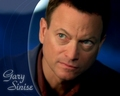 gary sinise as mac taylor - csi-ny photo