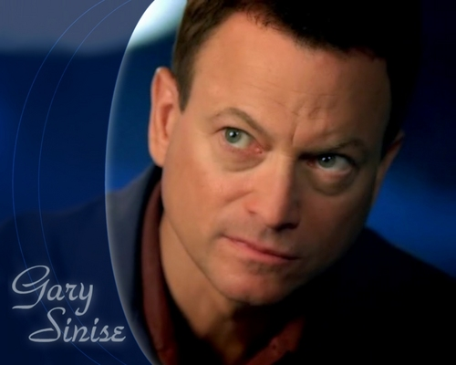 CSI:NY wallpaper probably with a portrait titled gary sinise as mac taylor