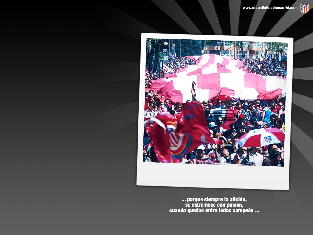 Club atltico de madrid images atletico de madrid hd wallpaper and club atltico de madrid images atletico de madrid hd wallpaper and background photos voltagebd Gallery