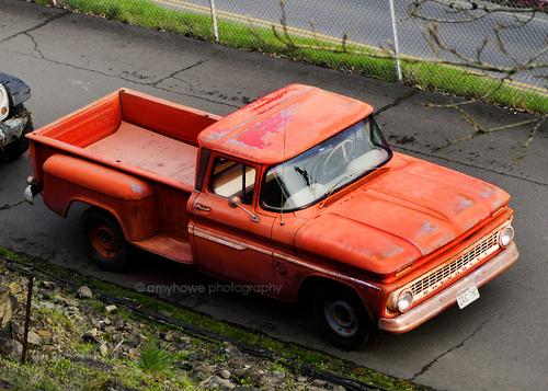 Bella's Truck