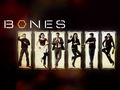Bones Cast - bones wallpaper