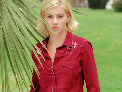 Elisha Cuthbert kertas dinding possibly with a portrait titled Elisha