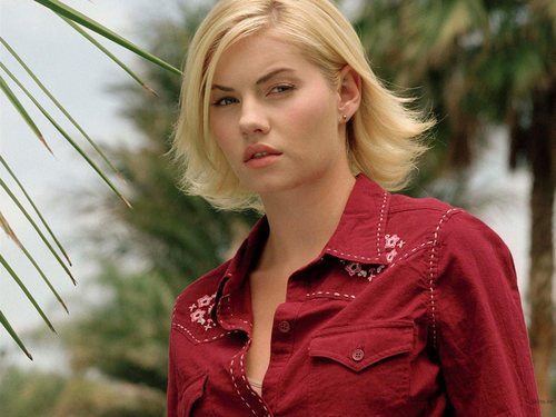 Elisha Cuthbert wallpaper with a well dressed person titled Elisha