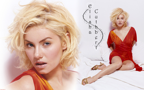 Elisha Cuthbert images Elisha HD wallpaper and background photos