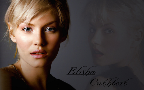 elisha cuthbert wallpaper with a portrait titled Elisha