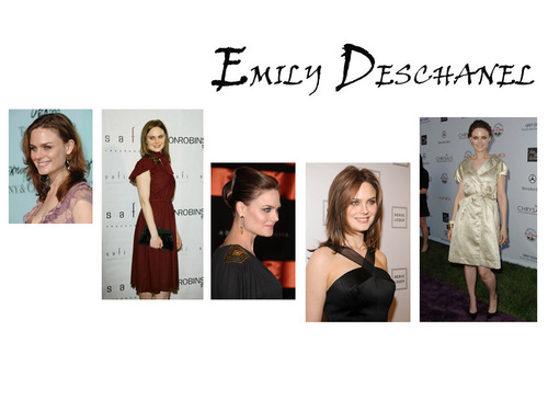 Emily Deschanel fond d'écran possibly containing a well dressed person, an outerwear, and a portrait entitled Emily