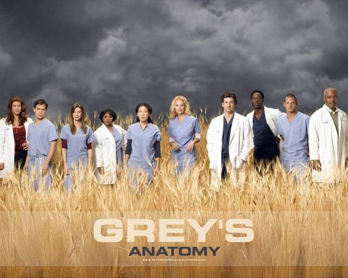 Grey's Anatomy پیپر وال probably containing a grainfield titled Grey's Anatomy