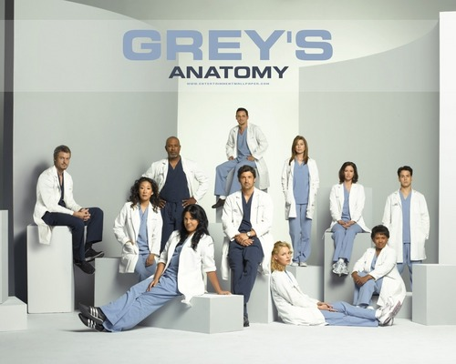 anatomia da grey wallpaper titled Grey's Anatomy