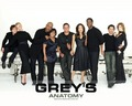 Grey's Anatomy - greys-anatomy wallpaper