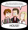 House, Wilson, Amber - house-md fan art