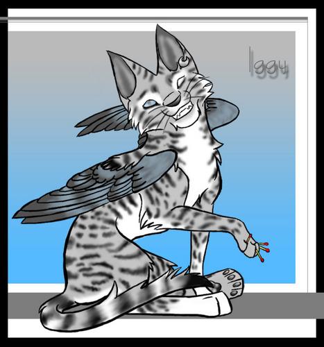 Iggy cat