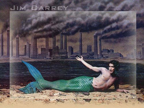 Jim The Mermaid
