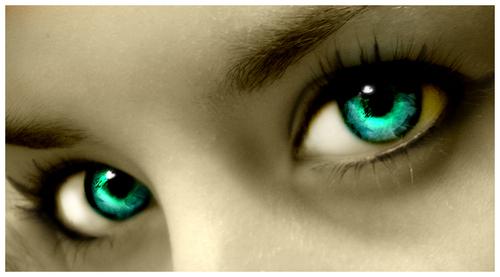 Max's eyes