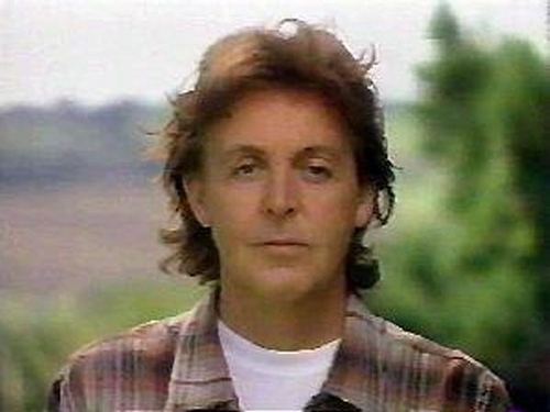 Paul McCartney Обои containing a portrait titled Paul
