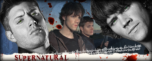 Sam & Dean Banners