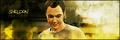 Sheldon Banner