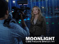 Sophia as Beth Turner in Moonlight wallpaper - sophia-myles wallpaper