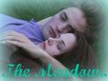 The Meadow - twilight-series photo