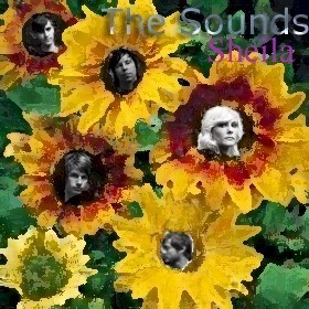 The Sounds in sunflowers
