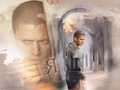 Wentworth - wentworth-miller wallpaper